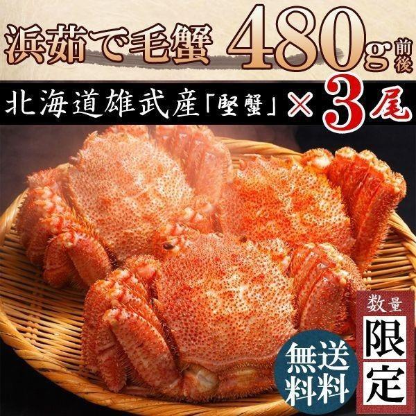 毛ガニ 毛蟹 カニ 蟹 姿 特大 北海道産 ボイル 毛がに 毛蟹 480g×3尾 かに けがに ギフト プレゼント 送料無料 お買い得 かにみそ