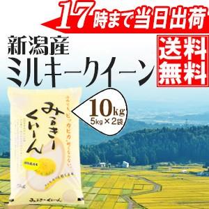 新潟産ミルキークイーン10kg(5kg×2袋) 特別栽培米 令和元年産 送料無料(一部地域のぞく)