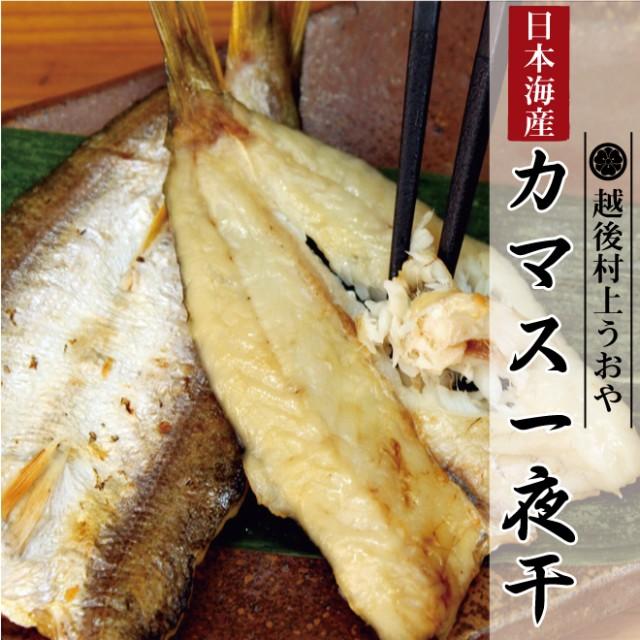 日本海産 カマス一夜干(3〜4尾入) /かます/カマス/干物/ひもの/乾物/お惣菜/魚/ご飯のおかず/グルメ