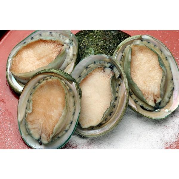 冷凍 生食可 あわび(翡翠の瞳) 1kg 3L 8粒〜9粒入【貝】