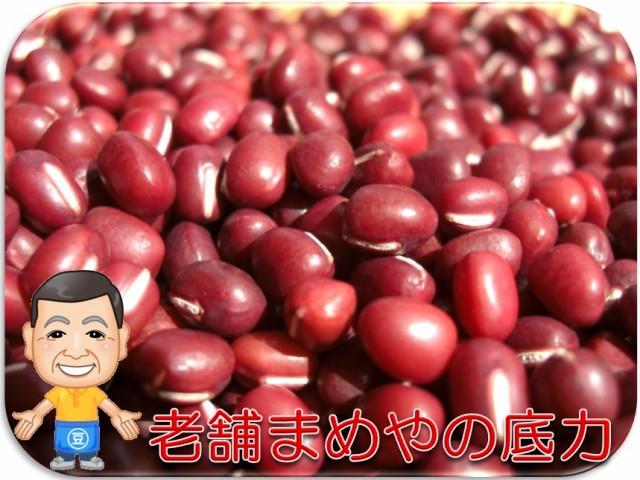 まめやの底力 北海道産 小豆 (あずき)  1kg    【全国宅配便 送料無料】