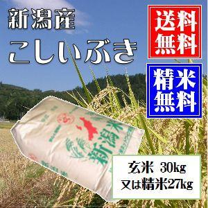 新潟産こしいぶき 玄米30kg 又は 白米27kg小分け可 送料無料(本州のみ) お米