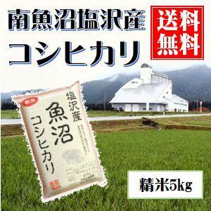 南魚沼産コシヒカリ(塩沢産) 真空包装5kg 送料無料(本州のみ)