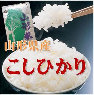 【精米・送料無料】令和元年産 山形県産 コシヒカリ 1等 玄米 30kg