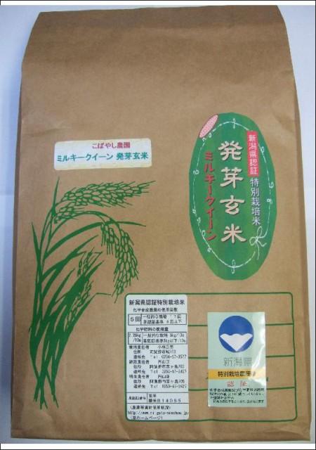 新潟県産(減農薬・減化学肥料米)発芽玄米 ミルキークイーン 20kg(10kg*2)  認証特別栽培米 令和元年産