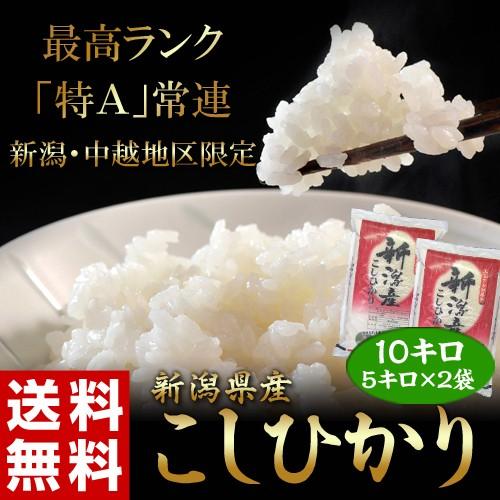 送料無料 新潟県産 コシヒカリ 白米 10kg(5kg×2袋)