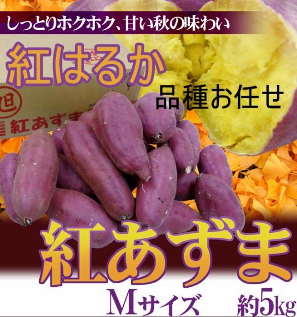 """千葉・茨城県産さつまいも  """"紅あずま/紅はるか/お任せ"""" サイズ 約5kg"""