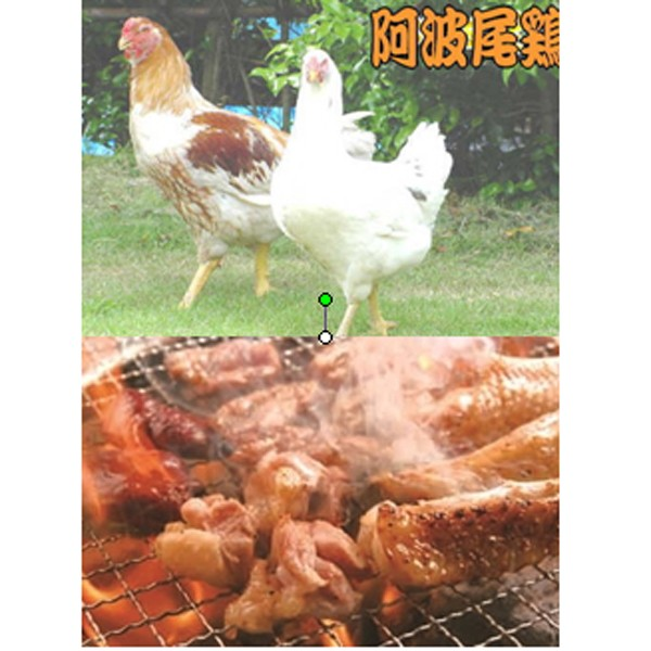 徳島地鶏 阿波尾鶏焼肉 送料無料 お取り寄せグルメ