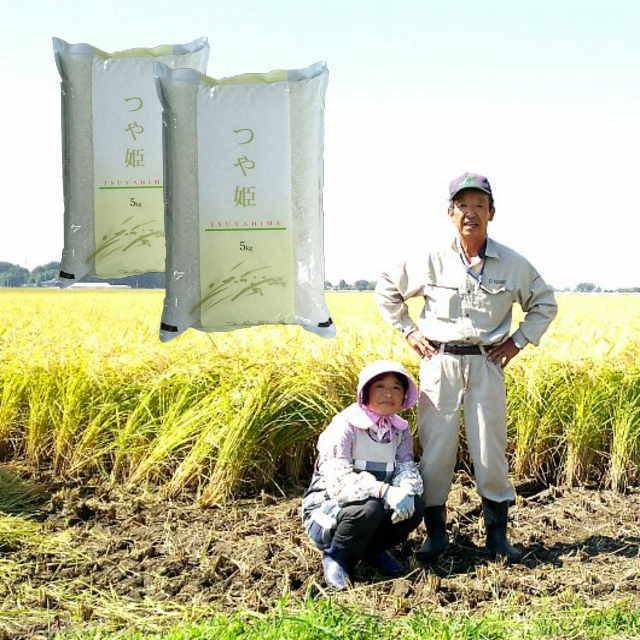 無洗米 10kg 島陰輝夫さんが作った 「つや姫」 令和2年度 宮城県 登米産 無洗米10kg (5kg×2) 送料無料 デザインポリ袋