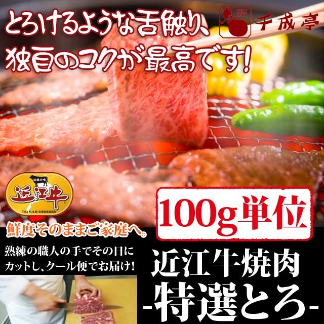 牛肉 焼肉 近江牛 特選とろ 100g単位 便利な小分け対応 お肉ギフト のしOK