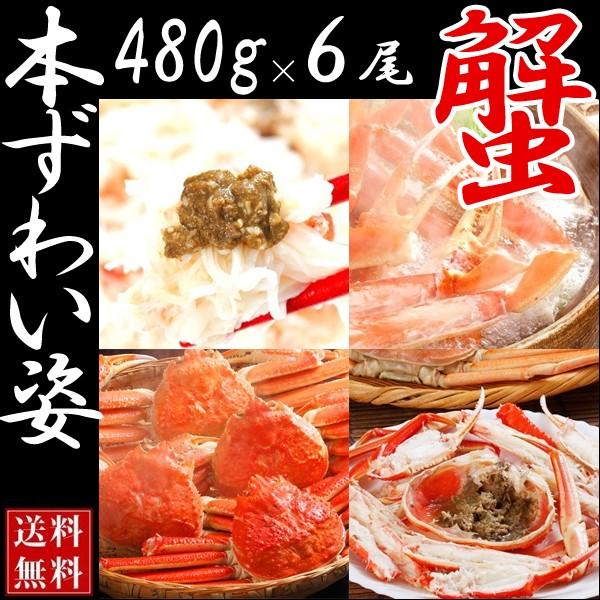 【送料無料】ボイルズワイガニ姿 2.8kg(6尾入り 1尾約480g)【ずわいがに かに 蟹】ずわいがに/松葉蟹
