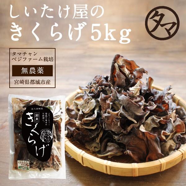 2019年度産 国産きくらげ5kg 約50kgの生キクラゲを使用。乾燥 干し 木耳 キクラゲ 業務用