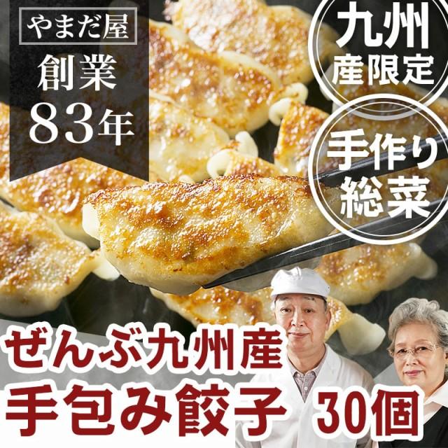 九州産 無添加 お惣菜 総菜 手作り そうざい 手づくり (鹿児島県産 はいからポーク 九州産野菜) 餃子 手包み ぎょうざ ギョウザ 30個