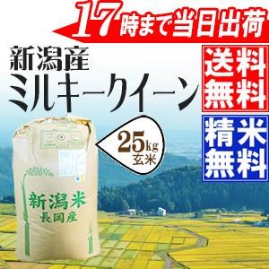 令和元年産 特別栽培米 新潟県産ミルキークイーン 玄米25kg 送料無料(一部地域を除く)