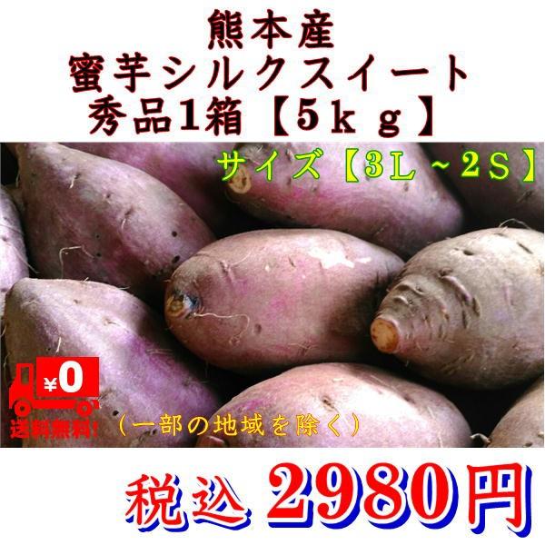 Y/Pシルクスイート 秀品 蔵出し 約5kg サイズ【3L〜2S】さつまいも 蜜芋 熊本産