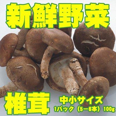 新鮮野菜 バイキング 椎茸 中小サイズ 1パック(5−6本)100g
