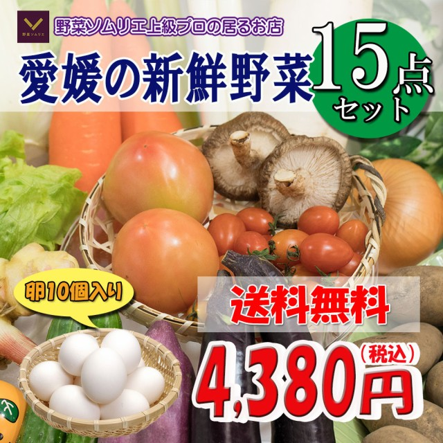 野菜 野菜セット 野菜詰め合わせ 厳選 15品 デラックス 卵 10個入り 送料無料 愛媛県産 他