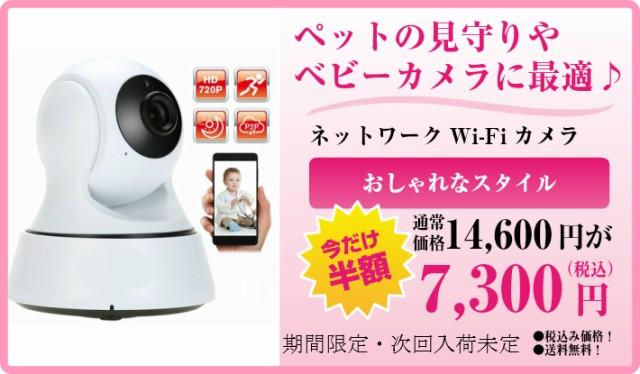 【送料無料】2021 最新 アプリ バージョンアップ 360 IPカメラ ネットワーク カメラ ペット ベビーモニター 防犯 監視 wi-fi IPカメラ ネ