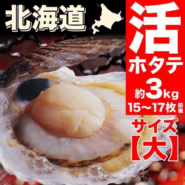 【送料無料】大サイズ北海道産貝付き活ホタテ約3kg分(15枚前後〜17枚前後)[活ほたて/殻付き/生きほたて](冷蔵)(のしOK)