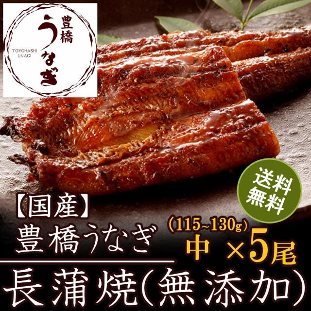 豊橋うなぎ蒲焼き(無添加)中115-130g×5尾 国産 ウナギ 鰻 送料無料