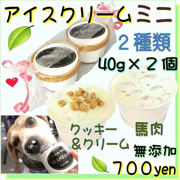 犬 おやつ 無添加 ミニ アイス クリーム 2種類 セット 馬肉 チップ クッキー クリーム 安心 暑さ 夏 ギフト 体温 調整 熱中症 対策