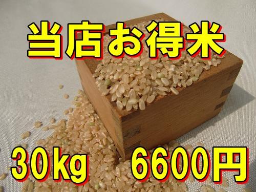 【精白米】当店お得米30kg/...