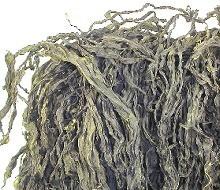 極上・糸わかめ100g 三陸わかめ 味噌汁の具材 無添加食品 ダイエット 低カロリー 自然食品 ミネラル ワカメ 国産 海藻