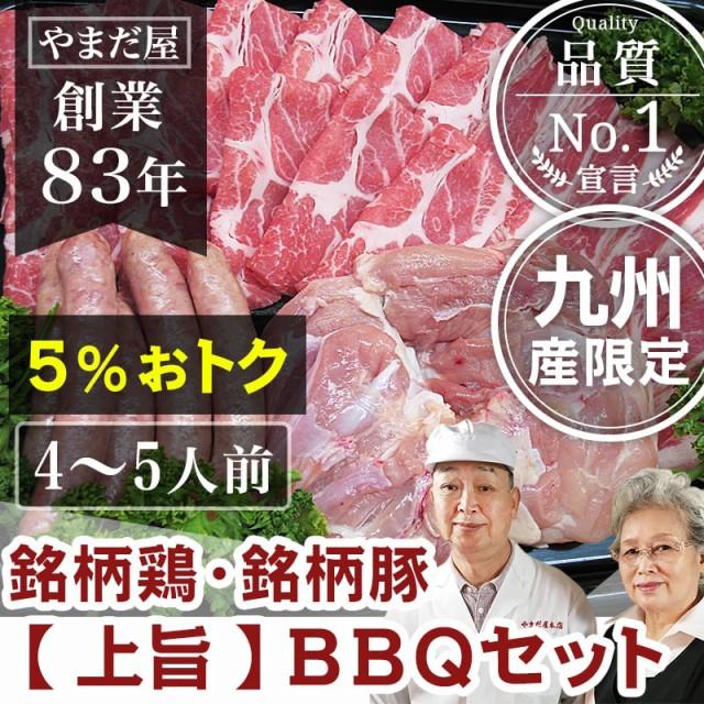 九州産 (鹿児島/長崎) はいからポーク 銘柄豚 国産豚 地鶏 赤鶏さつま とり肉 BBQ バーベキュー 焼き肉 焼肉 【上旨セット】 4〜5人