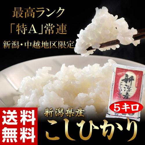 《送料無料》新潟県産「コシヒカリ」 白米 5kg ○