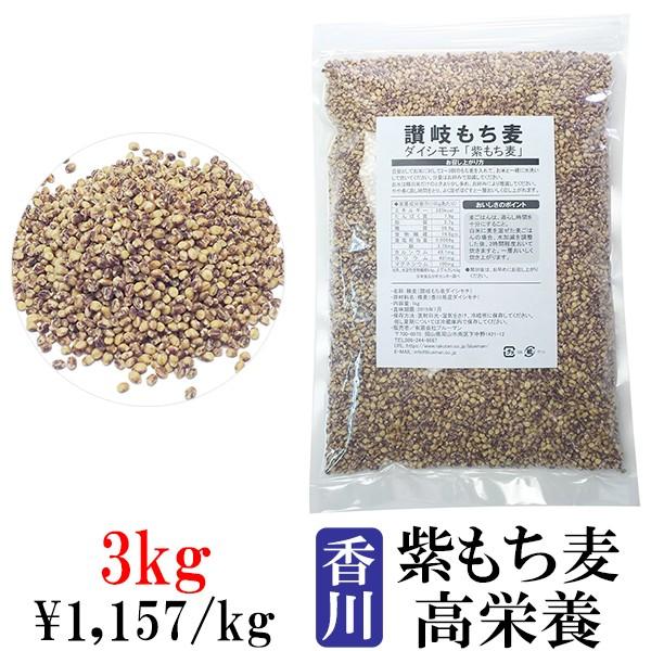 讃岐もち麦 ダイシモチ 1kg×3袋【紫もち麦ごはん 3kg 国産 100% 香川県産 大麦 3キロ ダイエット食品 食物繊維 業務用】