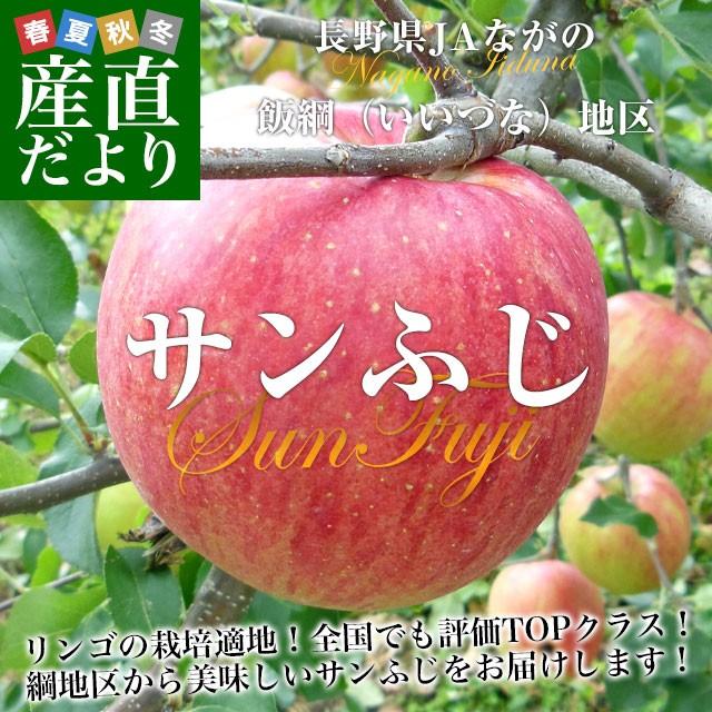 送料無料 長野県より産地直送 JAながの飯綱地区 サンふじりんご 赤秀以上 5キロ (14玉から18玉) 林檎 リンゴ さんふじ サンフジ さんフジ