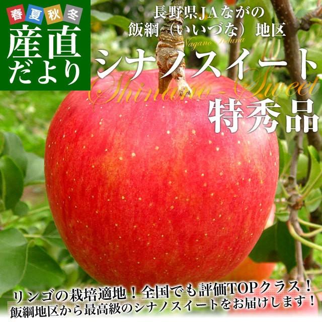 長野県より産地直送 JAながの 飯綱(いいづな)地区 シナノスイート 特秀品 5キロ(16玉から18玉) 送料無料リンゴ 林檎 産直だより