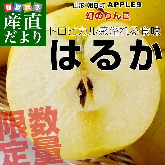 山形県より産地直送 朝日町アップルズ はるか 秀品 2キロ(5玉から8玉) 送料無料 林檎 りんご リンゴ 産直だより