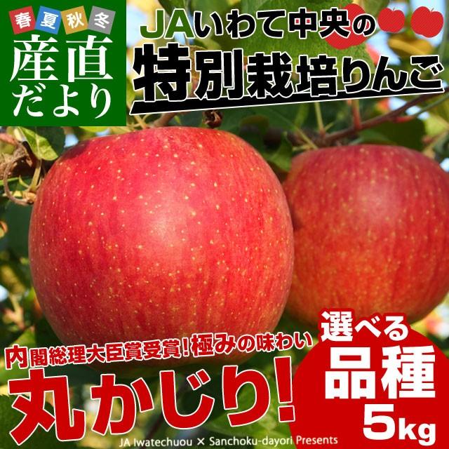 岩手県より産地直送 JAいわて中央 皮ごとまるごと!特別栽培りんご 5キロ (14玉から25玉) 林檎 リンゴ 送料無料 産直だより
