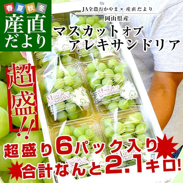 JA全農おかやま協賛 岡山県産 マスカット・オブ・アレキサンドリア 超盛り2.1キロ (約350g×6パック)送料無料 ぶどう 産直だより