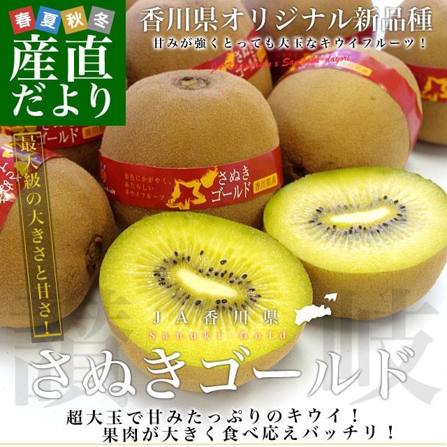 送料無料 香川県より産地直送 JA香川県 キウイフルーツ さぬきゴールド 秀品 1.3キロ化粧箱(7玉から9玉) キウイ キウィ 産直だより