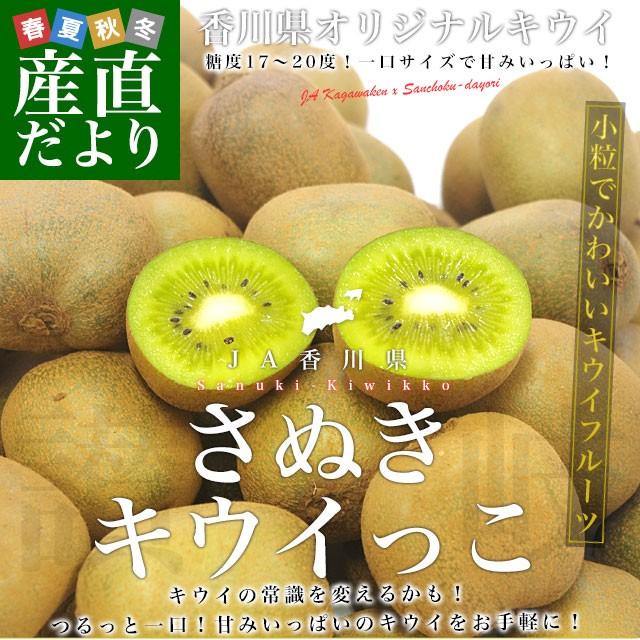 送料無料 香川県より産地直送 JA香川県 高糖度キウイ さぬきキウイっこ 2キロ (40玉から80玉前後) キウイフルーツ 讃岐キウイ きういっ