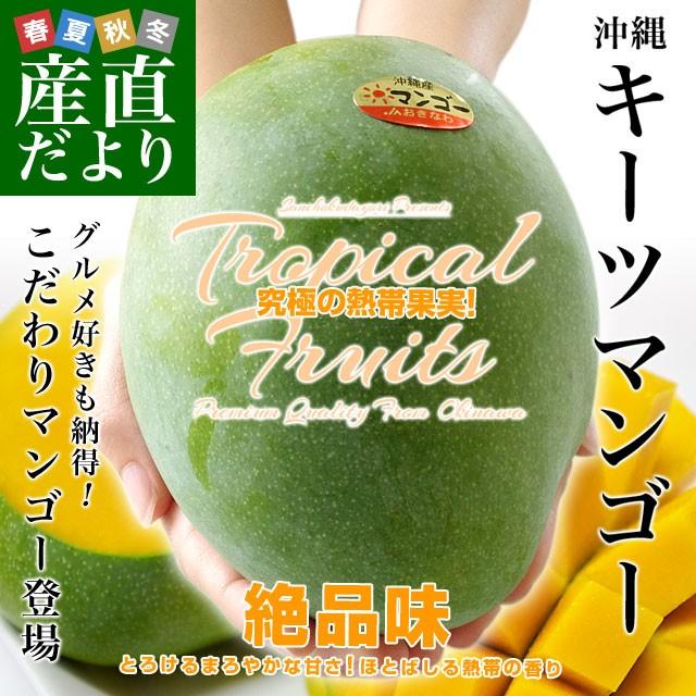送料無料 沖縄県より産地直送 JAおきなわ キーツマンゴー 約800g 化粧箱 まんごー 送料無料 産直だより