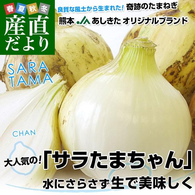 熊本県より産地直送 JAあしきた サラたまちゃん LAサイズ 約10キロ (30玉前後) 送料無料 玉葱 タマネギ サラ玉 さらたま さらタマ