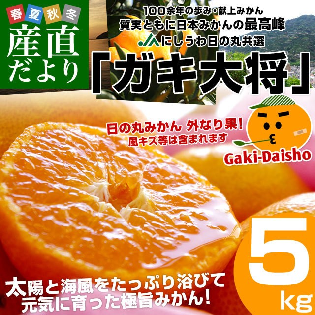 愛媛県より産地直送 JAにしうわ 日の丸みかん ガキ大将 Sサイズ 5キロ(60玉前後) 送料無料 蜜柑 ミカン 産直だより