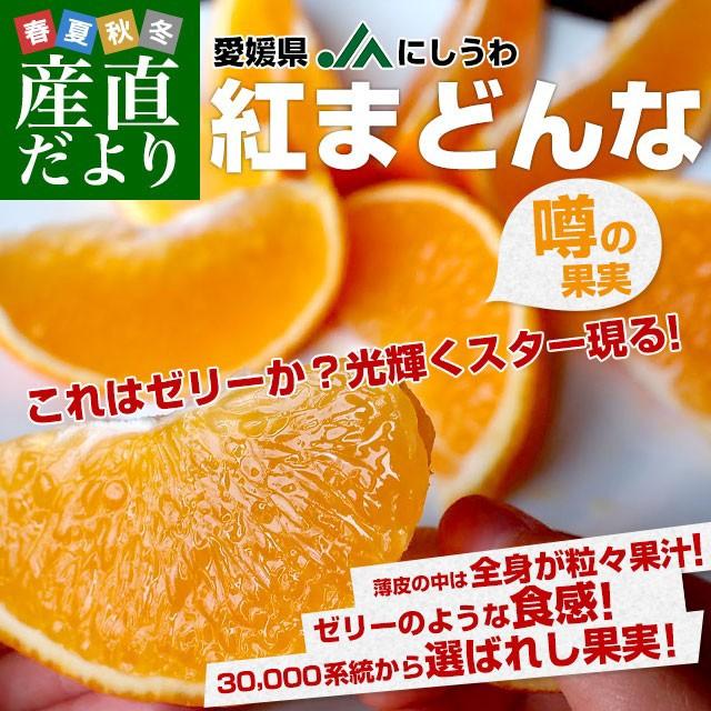 愛媛県より産地直送 JAにしうわ 紅まどんな 2LからLサイズ 3キロ(12玉から15玉) オレンジ おれんじ 送料無料 産直だより