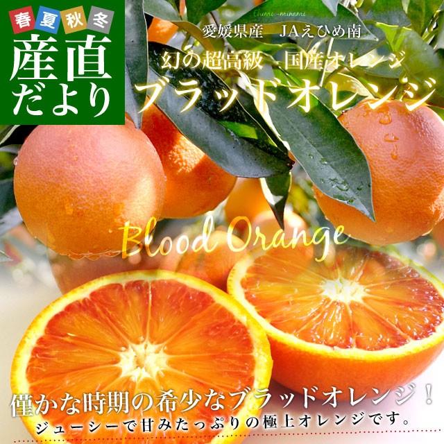 愛媛県より産地直送 JAえひめ南 ブラッドオレンジ ( 選べる品種:モロ種・タロッコ種) 秀品 3キロ (18玉から20玉前後) 柑橘 国産オレンジ
