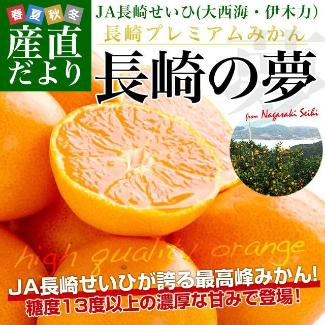 長崎県より産地直送 JA長崎せいひ プレミアムみかん 長崎の夢 約2.5キロ(24玉から30玉前後)送料無料 蜜柑 みかん