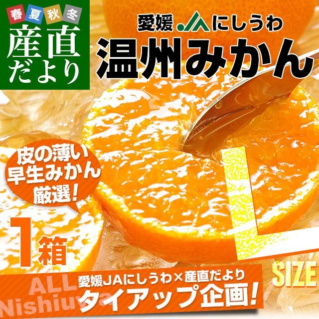 愛媛県より産地直送 JAにしうわ 西宇和温州みかん 3キロ Lサイズ (24玉前後) 送料無料 蜜柑 ミカン