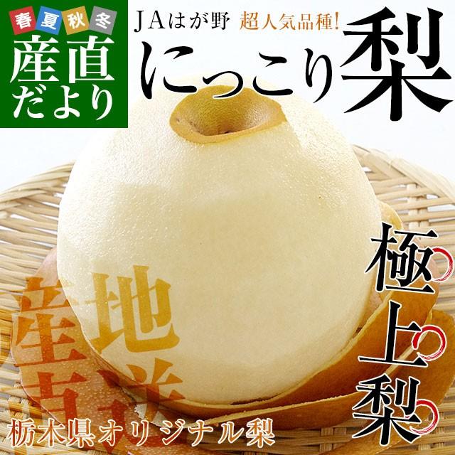 送料無料 栃木県より産地直送 JAはが野 にっこり梨 大玉 5キロ (4玉から5玉) 優品以上 なし 梨 ナシ 産直だより