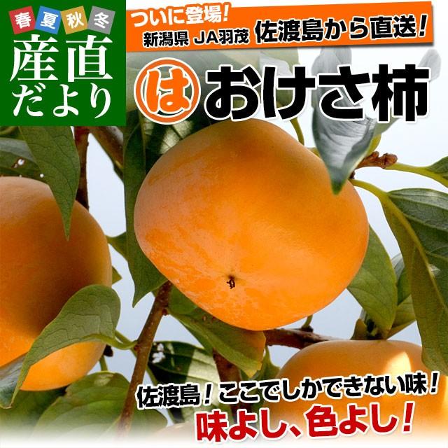 新潟県より産地直送 佐渡島 JA羽茂 おけさ柿 3.75キロ LからMサイズ(18玉から20玉) 柿 かき 送料無料 産直だより