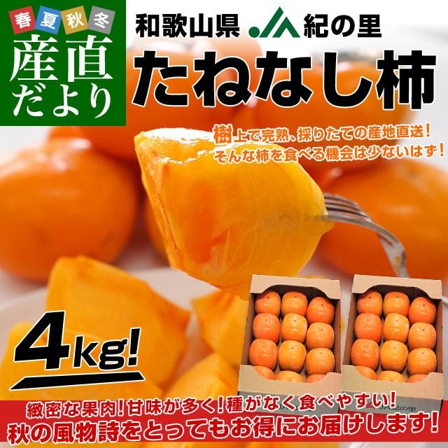 和歌山県より産地直送 JA紀の里 たねなし柿 合計4キロ 2キロ×2箱 (10玉から12玉入り×2箱) カキ かき 柿 送料無料 産直だより