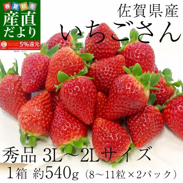 佐賀県産 新 ブランド苺 いちごさん 秀品 3Lから2Lサイズ 1箱 約540g (270g×2パック) 送料無料 イチゴ 産直だより plus