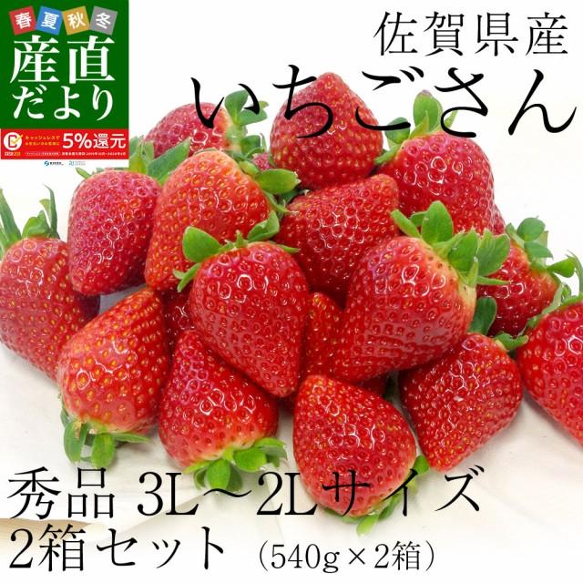 佐賀県産 新ブランド苺 いちごさん 秀品 3Lから2Lサイズ 2箱セット  (約540g×2箱) 送料無料 イチゴ 産直だより plus