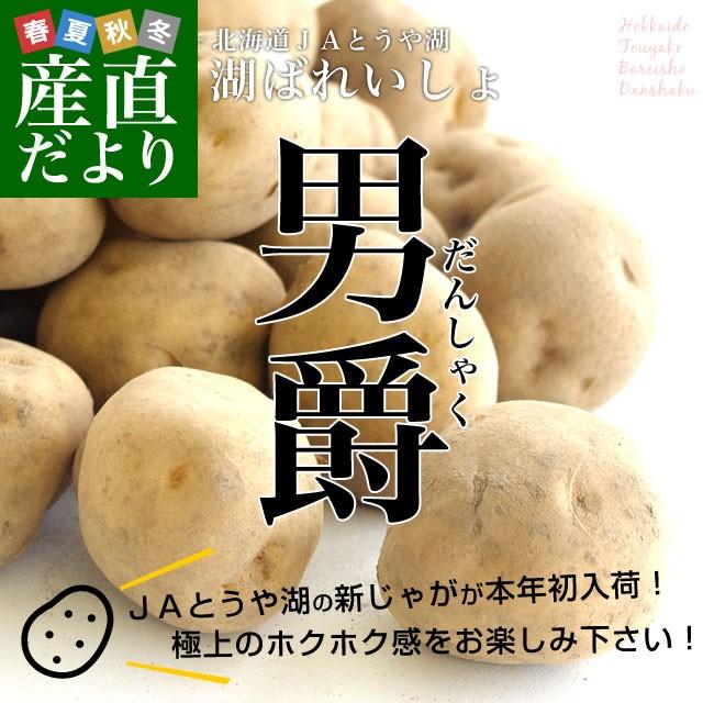 北海道より産地直送 JAとうや湖 じゃがいも 湖ばれいしょ「男爵」 Lサイズ 10キロ 馬鈴薯 ジャガイモ 送料無料 産直だより